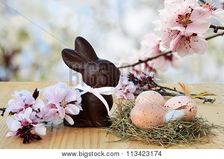 Easter Background, Card With Easter Eggs, Chocolate Bunny And Pink Spring Blossoms