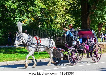 NEW YORK CITY-OCTOBER 12, 2015: traditional horse carriage with unidentified people in Central Park, that is the most visited urban park in the US as well as one of most filmed locations in the world.