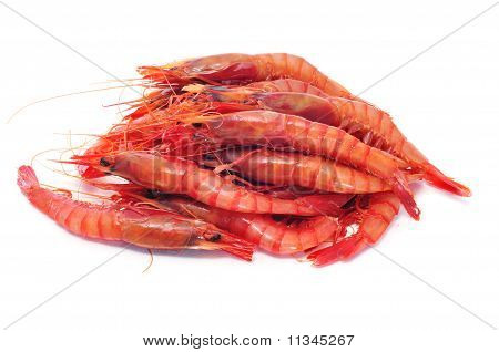 a pile of shrimps isolated on a white background poster