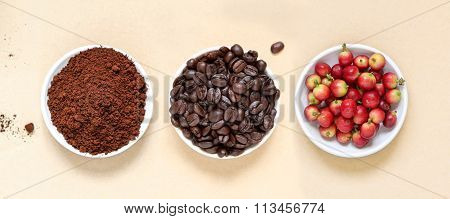 Red coffee beans berries, roasted coffee and coffee powder.