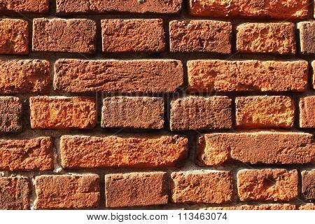 The red bricks. Wall of bricks.