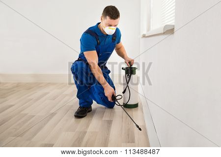 Worker Spraying Pesticide At Home