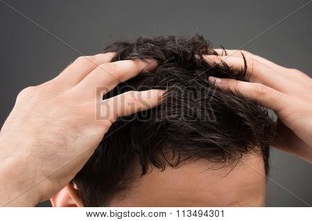 Cropped image of man suffering from dandruff against gray background poster
