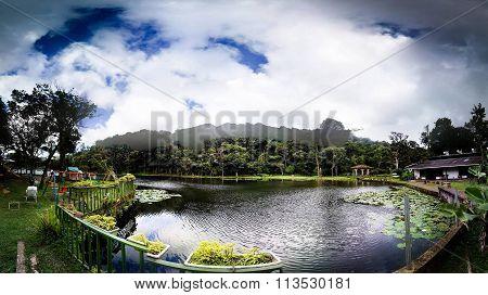 Selva Negra - Matagalpa