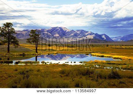 Autumn Steppe Prairie Landscape