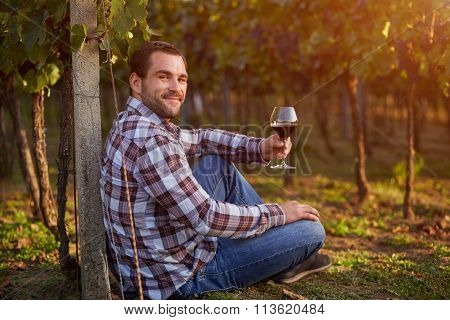 Young Man In The Vineyard Tasting Red Wine, Toned