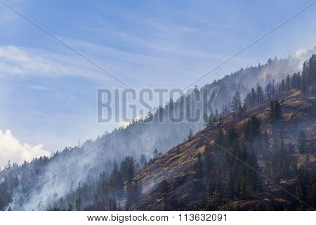forest fire on the mountain landscape in hot summer day