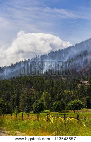 forest fire in the mountains on a hot summer day