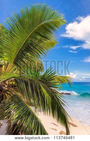 Paradise beach on tropical island Mahé in Seychelles