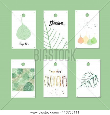 Organic Style Gift Tags And Cards With Leaves. Stock Vector Illustration