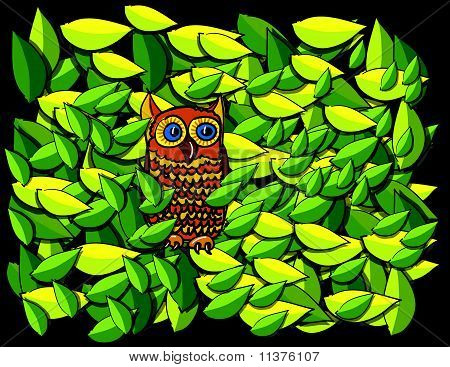 Owl In Tree Cartoon