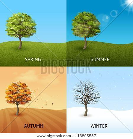 Tree concept set