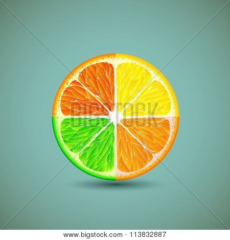 Icon Citrus Fruits.