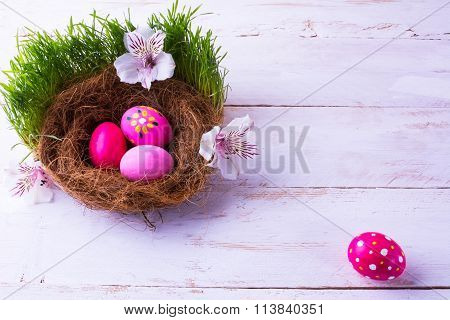 Easter Eggs In A Nest In Grass