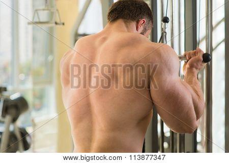 Muscular man's back.
