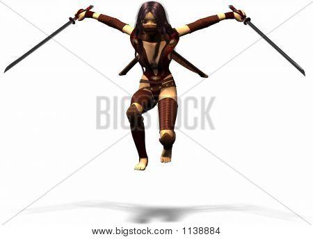 Ninja Fighter