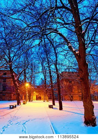 Park In The Winter By Night