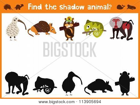 Mirror Image Five Different Cute Animals And A Good Visual Game. Task Find The Right Answer Black Sh