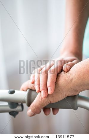 Young And Old Hand