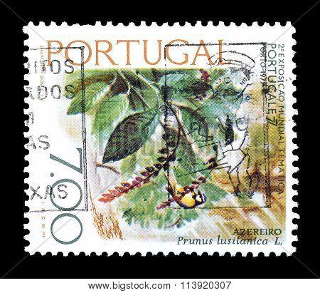 Portugal 1976