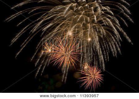 Fireworks explode in the sky