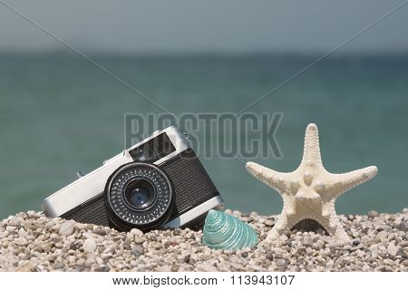 Retro camera, starfish and sea snail on the beach