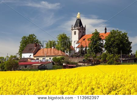Church And Golden Rapeseed Field (brassica Napus)