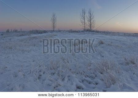 sunset in a snowy field