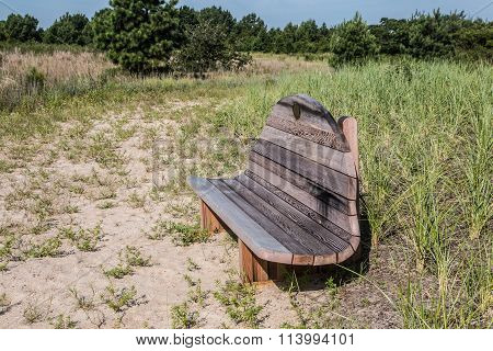Wooden Bench on Trail at Pleasure House Point in Virginia Beach