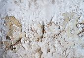 wall in destroyed hotel in former Tourist Complex of Kupari village Croatia poster