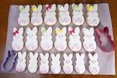 Easter Bunny Sugar Cookies homemade covered in home made marshmallow fondant, decorated with candy eyes, nose, feet and bow. Large and small bunnies on parchment paper with cookie cutter poster