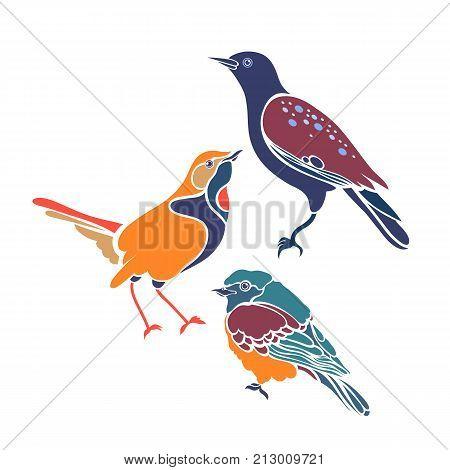 Sturnus vulgaris, Erithacus rubecula, Phoenicurus phoenicurus. Set of three birds. Flat design. Vector illustration.