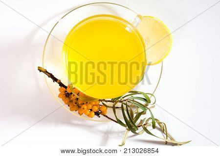 Healing sea-buckthorn tea delicious aromatic full of vitamin and microelements of bright yellow color with berries and leaves of the sea buckthorn fruit on a white background.