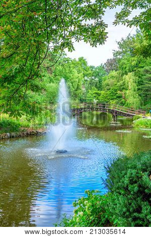 View of beautiful garden with fountain, wooden walking bridge, green trees, bushes and blue sky, reflecting in a pond water. Summer natural landscape