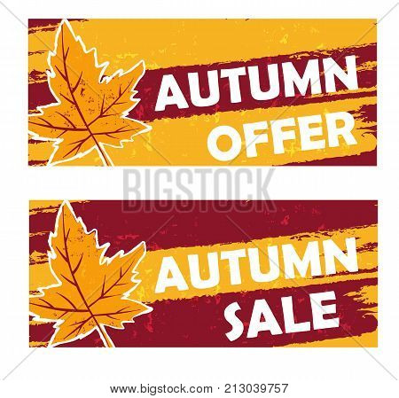 autumn offer and sale - yellow brown drawn banners with text and fall leaf business seasonal shopping concept vector