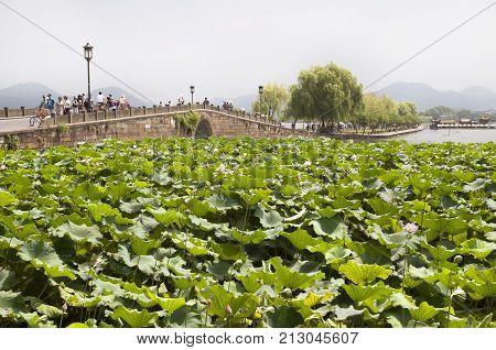 HANGZHOU, CHINA - JULY 31, 2012 - Broken Bridge, West Lake, Hangzhou