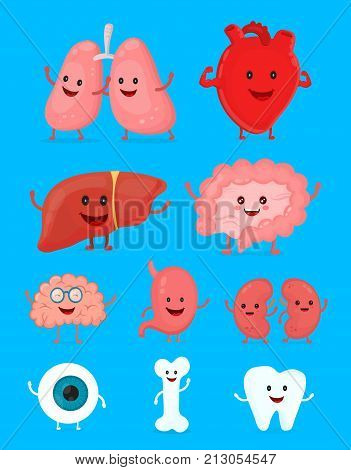 Cute smiling happy human healthy strong organs set. Vector modern style cartoon character illustration icon design. Heart, liver, brain, stomach, tooth, eye.Human internal organs.
