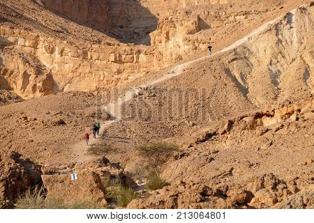 Unrecognized group of hikers on desert trail in Negev mountains Israel.