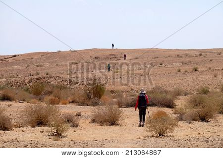 Unrecognized group of hikers on desert trail in Negev Israel.