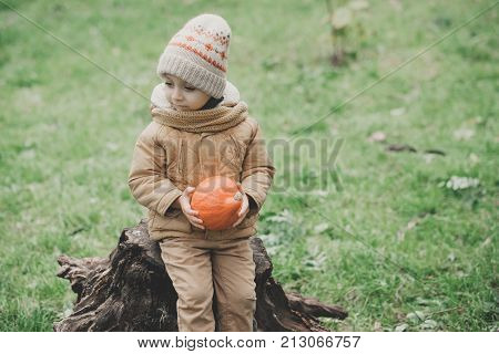 little cute boy playing with his dog fox terrier in the autumn park