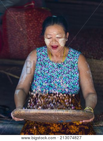 SHAN STATE MYANMAR - SEP 06 : Burmese woman selling onion in a market in Shan state Myanmar on September 06 2017. Agriculture is the main industry in Myanmar