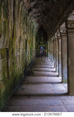 SIEM REAP CAMBODIA - OCT 15 : The Ta Prohm temple in Angkor Thom Siem Reap Cambodia on October 15 2017 Angkor Thom was the last and capital city of the Khmer empire.