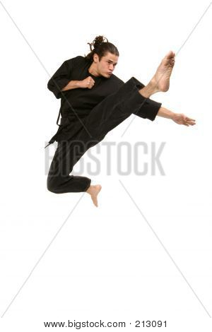 Freestyle Martial Artist