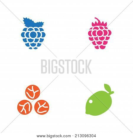 Collection Of Cabbage, Razz, Lime And Other Elements.  Set Of 4 Fruit Icons Set.