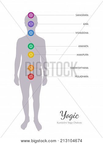 Seven chakras, human energy body. Chakra icon vector