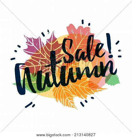 Design autumnal promotion web banner and label with Sale Autumn text on modern color silhouette maple leaf and season herb. Lable for season fall discount offer. Vector.