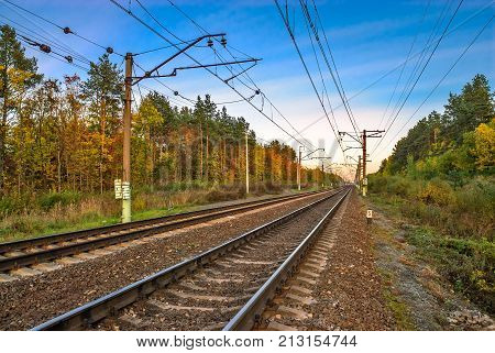 Landscape with railway in autumn forest at sunset