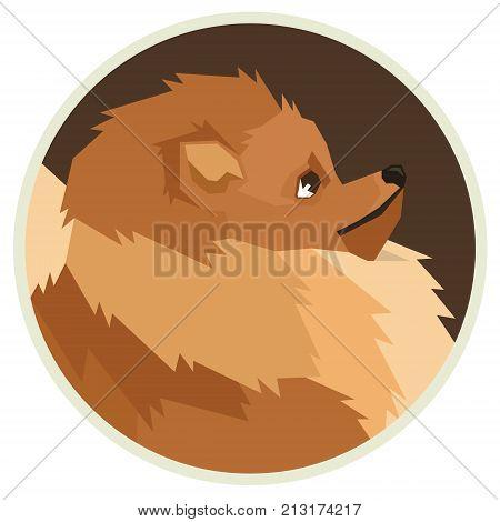 Dog collection Pomeranian Geometric style Avatar icon round set