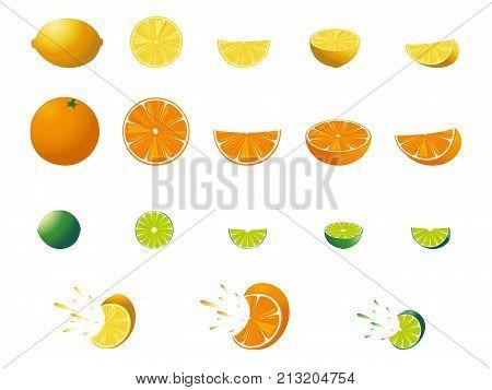 Fresh citrus orange, lemon, lime Vector illustration