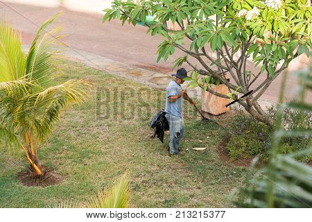 The Gardener Works In The Garden, Varadero, Matanzas, Cuba. Copy Space For Text.